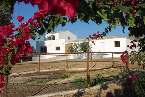 Villa en El Aljarafe