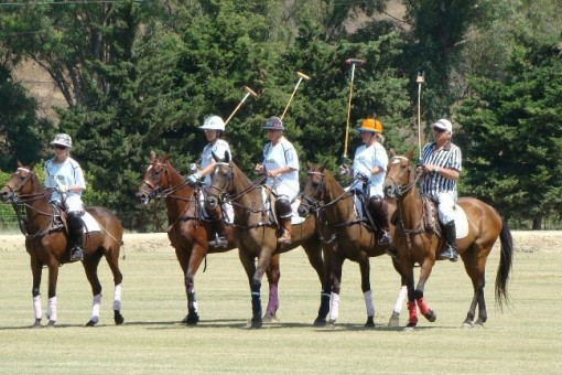 Great polo club property for sale, Sotogrande
