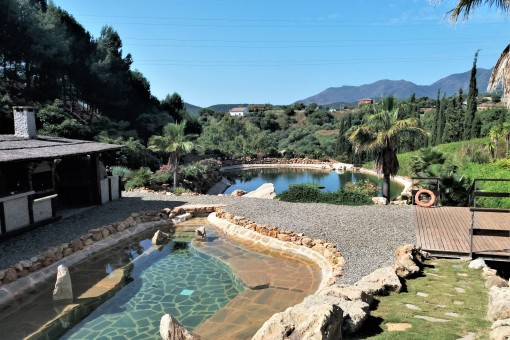 Amazing Country property ideal for horses,...
