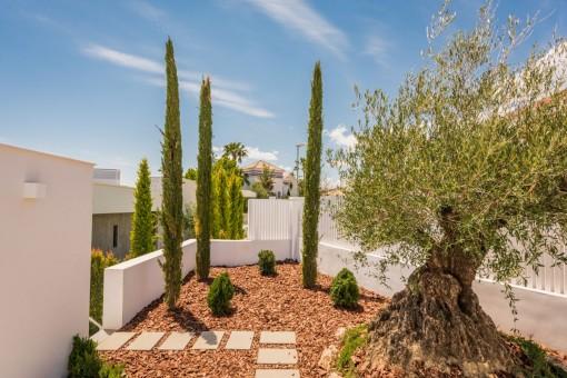 Zona de la entrada y jardín