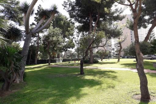 Parque en la vecindad